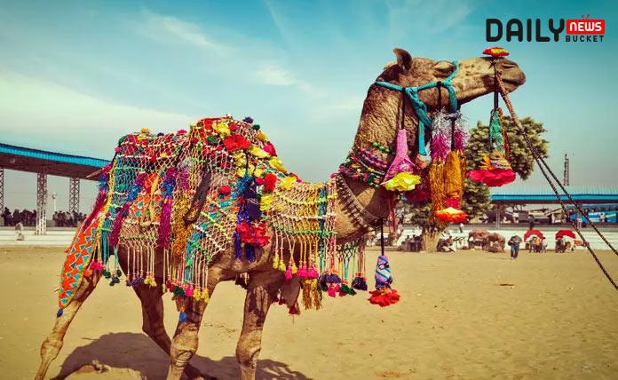 Pushkar Camel Fair 2020